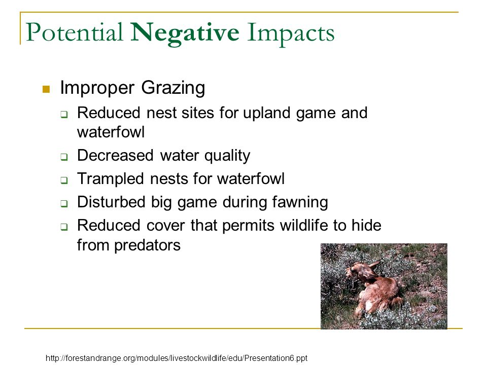 Properly Managed Grazing Create patchy habitat with high structural diversity.