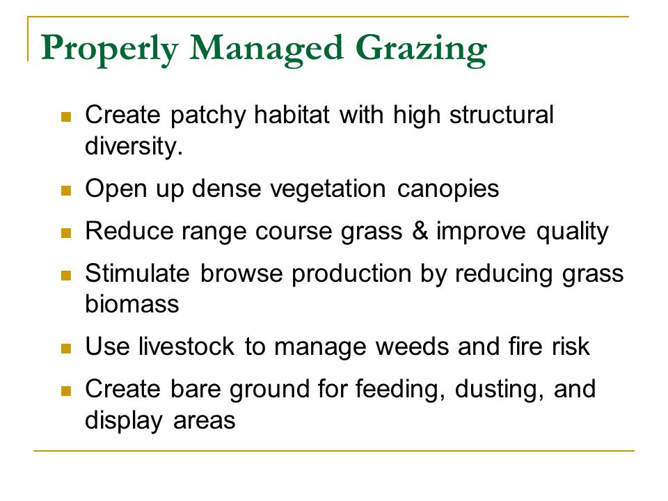 Irresponsible Grazing Reduce nest sites for upland game birds & wildlife Trample nest Disturb big game during fawning Reduce wildlife hiding cover Reduce forage for ungulates Reduce floral diversity Attract predators, parasites, or disease