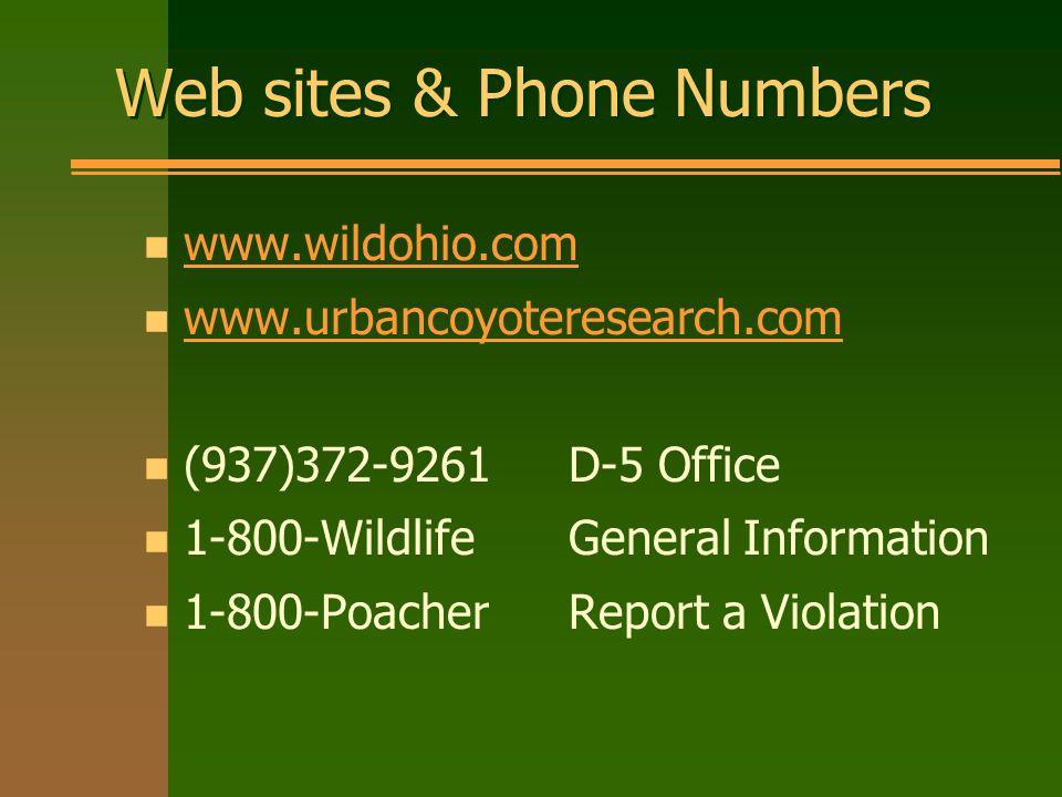 Web sites & Phone Numbers n www.wildohio.com www.wildohio.com n www.urbancoyoteresearch.com www.urbancoyoteresearch.com n (937)372-9261 D-5 Office n 1-800-Wildlife General Information n 1-800-PoacherReport a Violation