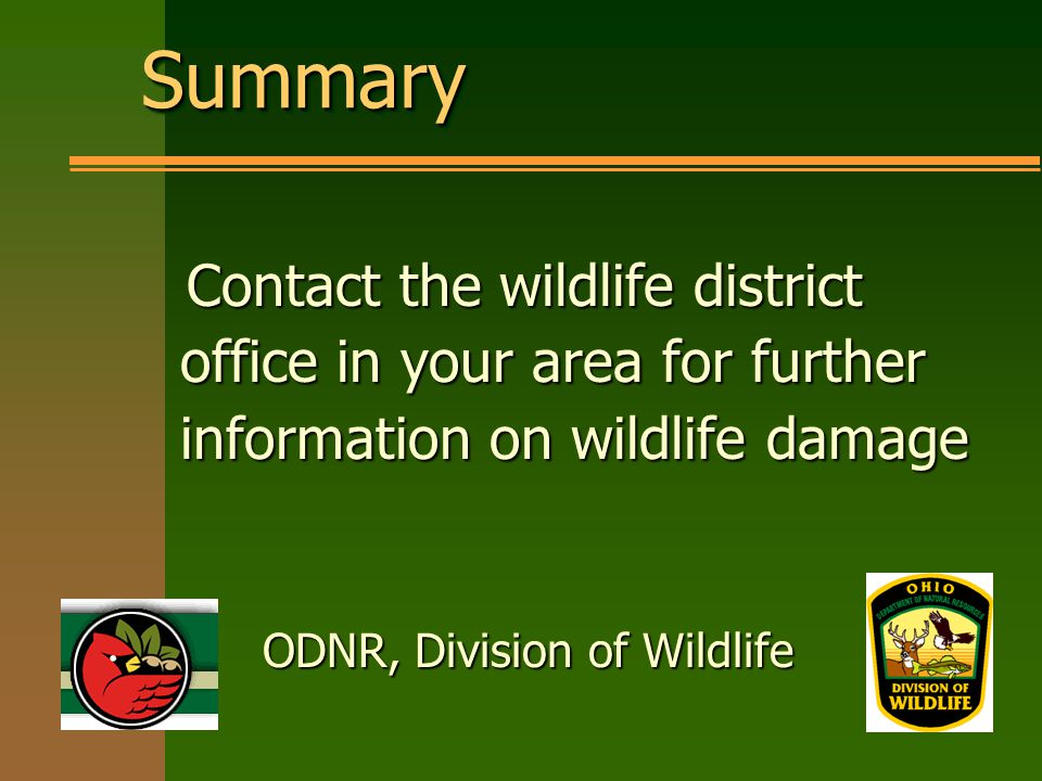 SummarySummary Contact the wildlife district office in your area for further information on wildlife damage ODNR, Division of Wildlife