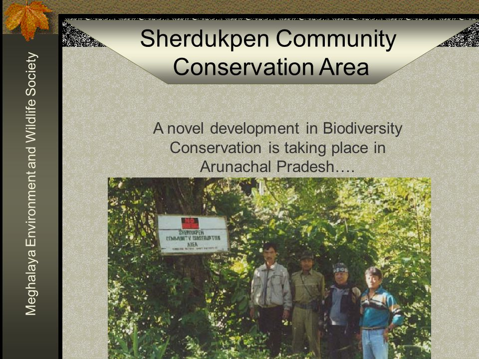 Sherdukpen Community Conservation Area Meghalaya Environment and Wildlife Society The region was environmentally studied during the 1980s from the geology, to geomorphology, to pedobiology, to limnology, to ichthiology, to entomology, to zoology, to botany, to anthropology, to atmospherics, to socio-economics, to climatics…