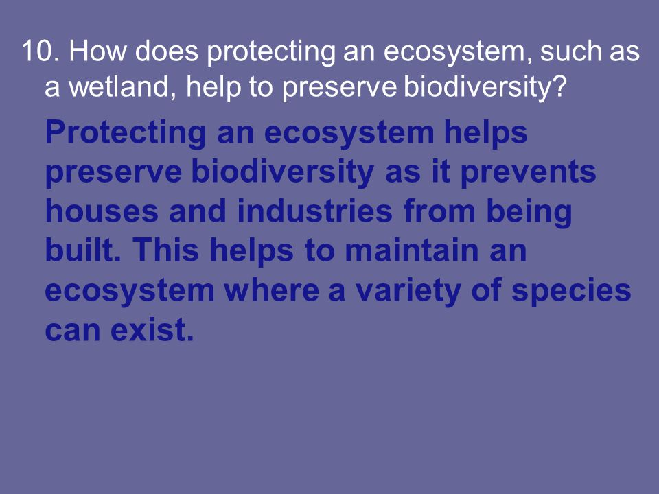 10. How does protecting an ecosystem, such as a wetland, help to preserve biodiversity? Protecting an ecosystem helps preserve biodiversity as it prev