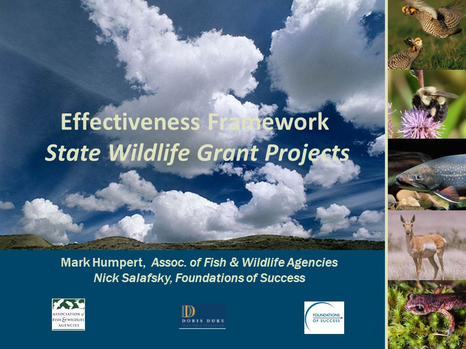 State Wildlife Grants Millions of $'s Fiscal Year
