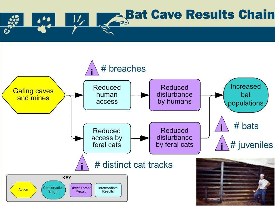 i # breaches i # distinct cat tracks i # bats i # juveniles