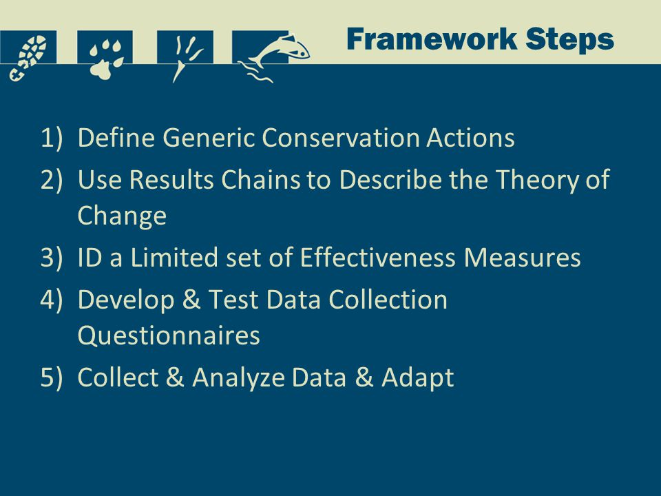 Framework Steps 1)Define Generic Conservation Actions 2)Use Results Chains to Describe the Theory of Change 3)ID a Limited set of Effectiveness Measures 4)Develop & Test Data Collection Questionnaires 5)Collect & Analyze Data & Adapt