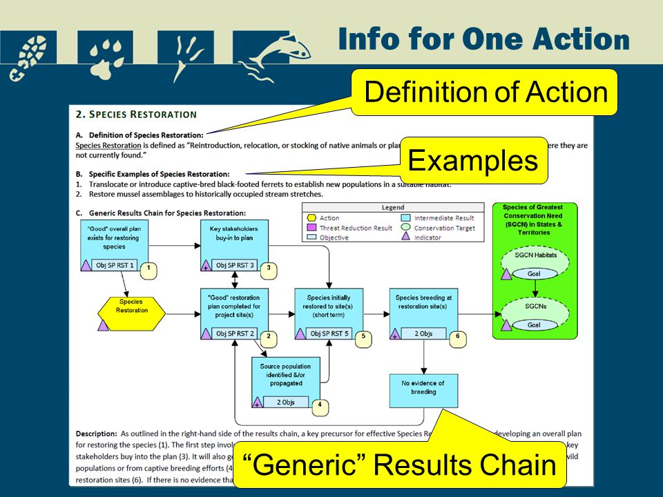 Info for One Actio n Definition of Action Examples Generic Results Chain