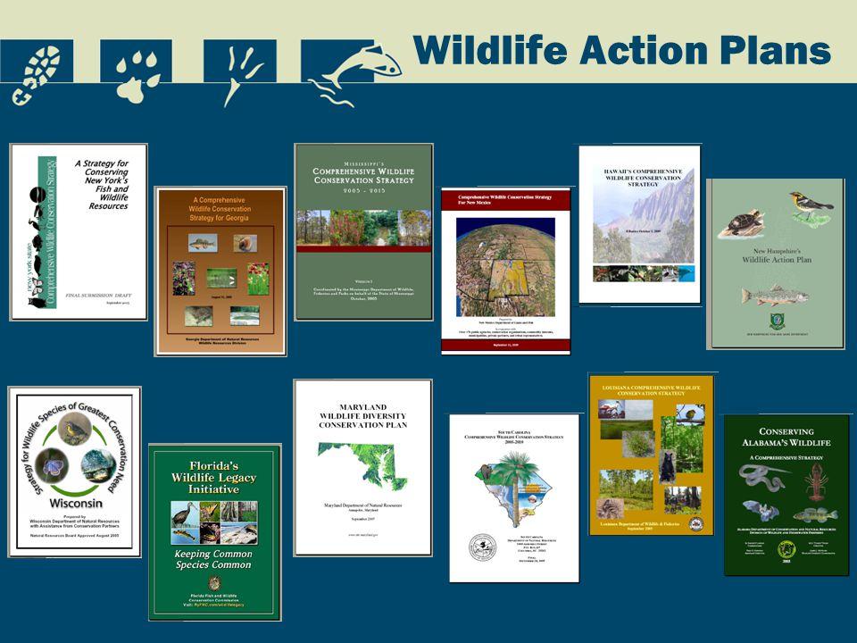 Wildlife Action Plans