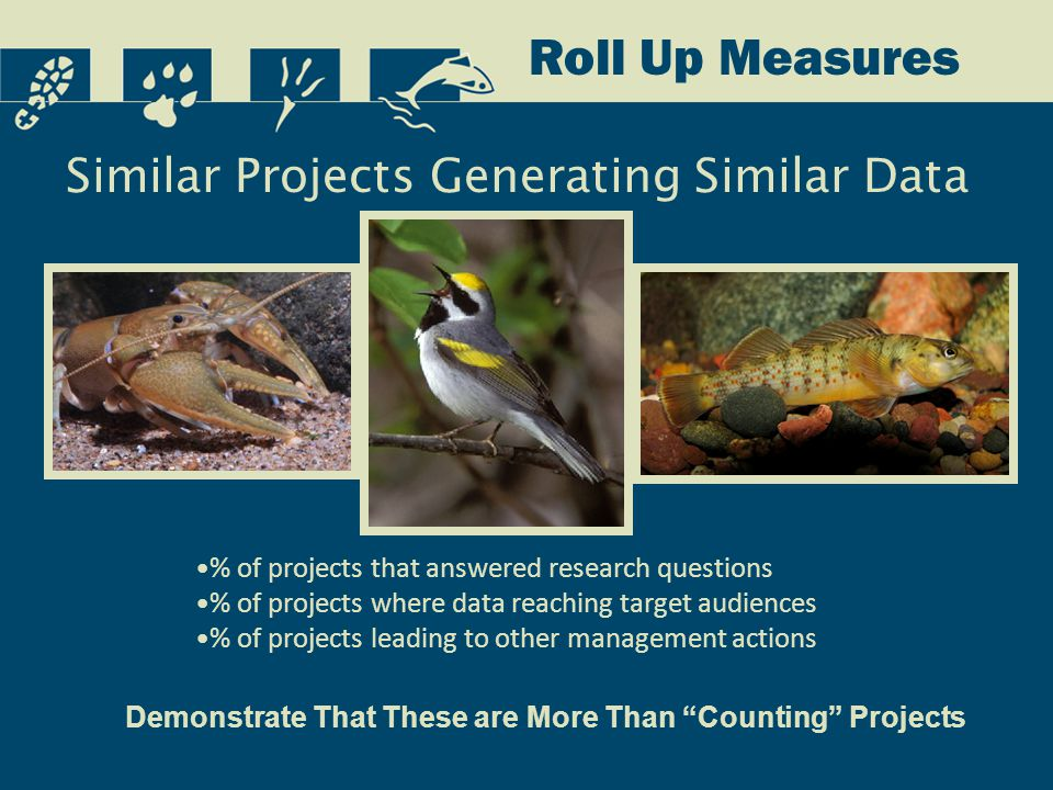 Similar Projects Generating Similar Data Roll Up Measures Demonstrate That These are More Than Counting Projects % of projects that answered research questions % of projects where data reaching target audiences % of projects leading to other management actions