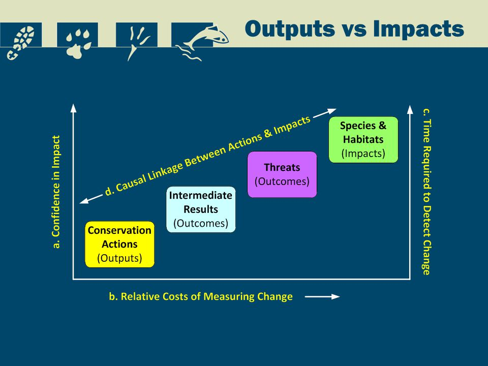 Outputs vs Impacts