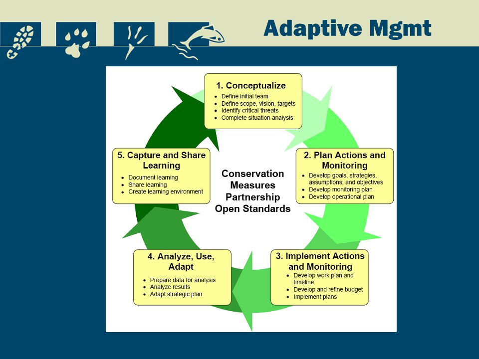 Adaptive Mgmt