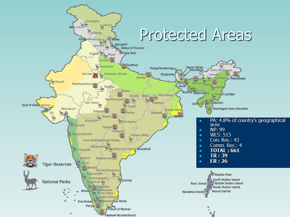 Protected Area Coverage  2.4% of the total area of the world  8% species of the world  Around 5% of the country's area has been brought under the Protected Area (PA) network  Consist of 99 National Parks and 515 Wildlife Sanctuaries  Conservation Reserve 43, Community Reserve 4  Total PAs = 661  TR = 39  ER = 26  Based on the conventional isolationist approach
