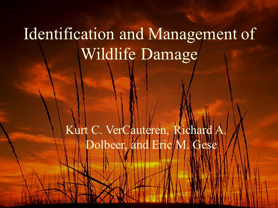 Identification and Management of Wildlife Damage Kurt C.