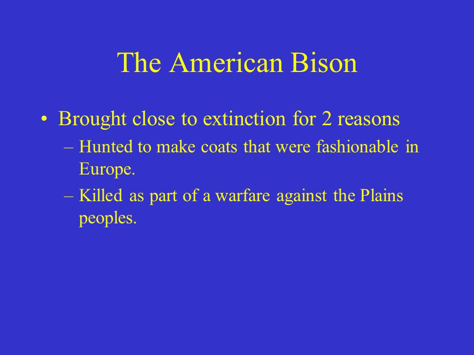 The American Bison Brought close to extinction for 2 reasons –Hunted to make coats that were fashionable in Europe. –Killed as part of a warfare again
