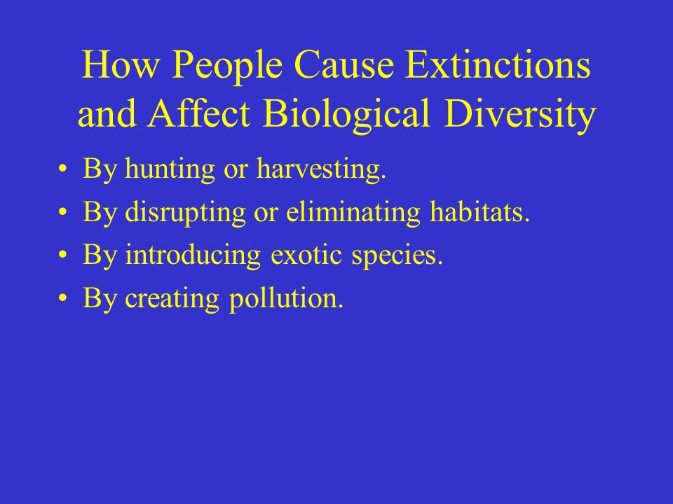 How People Cause Extinctions and Affect Biological Diversity By hunting or harvesting. By disrupting or eliminating habitats. By introducing exotic sp