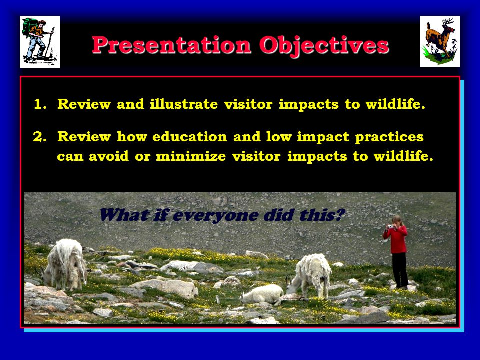 Presentation Objectives 1. Review and illustrate visitor impacts to wildlife.