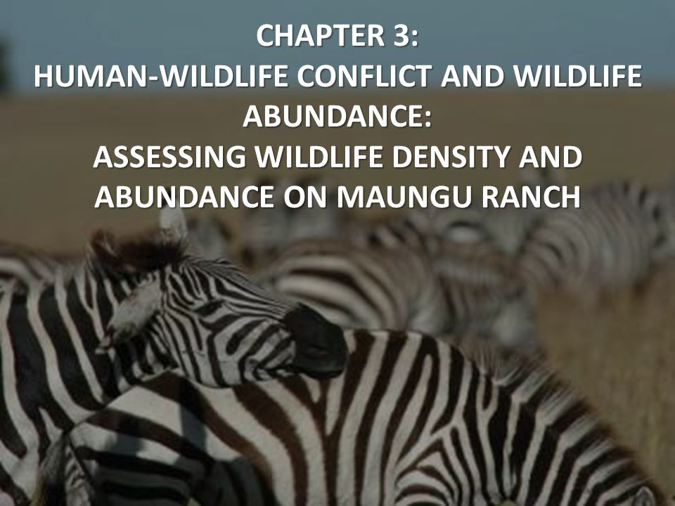 CHAPTER 3: HUMAN-WILDLIFE CONFLICT AND WILDLIFE ABUNDANCE: ASSESSING WILDLIFE DENSITY AND ABUNDANCE ON MAUNGU RANCH
