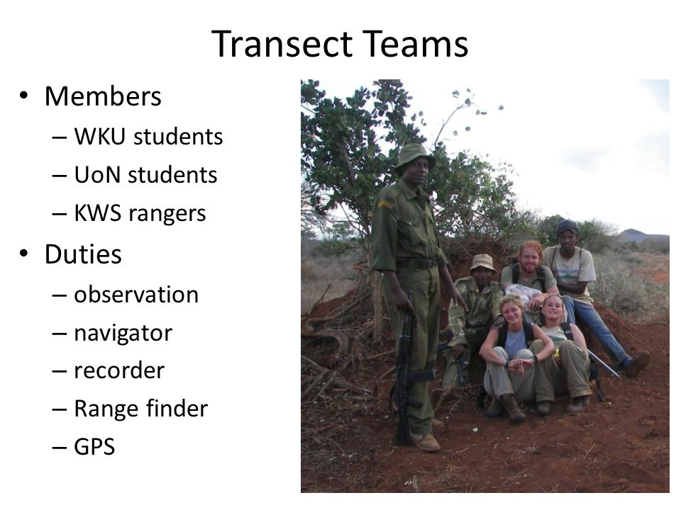 Transect Teams Members – WKU students – UoN students – KWS rangers Duties – observation – navigator – recorder – Range finder – GPS