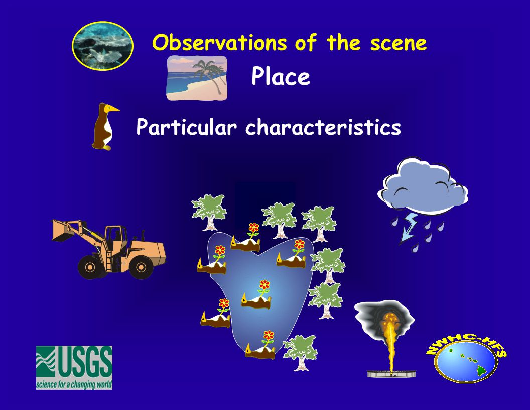 Place Observations of the scene Particular characteristics