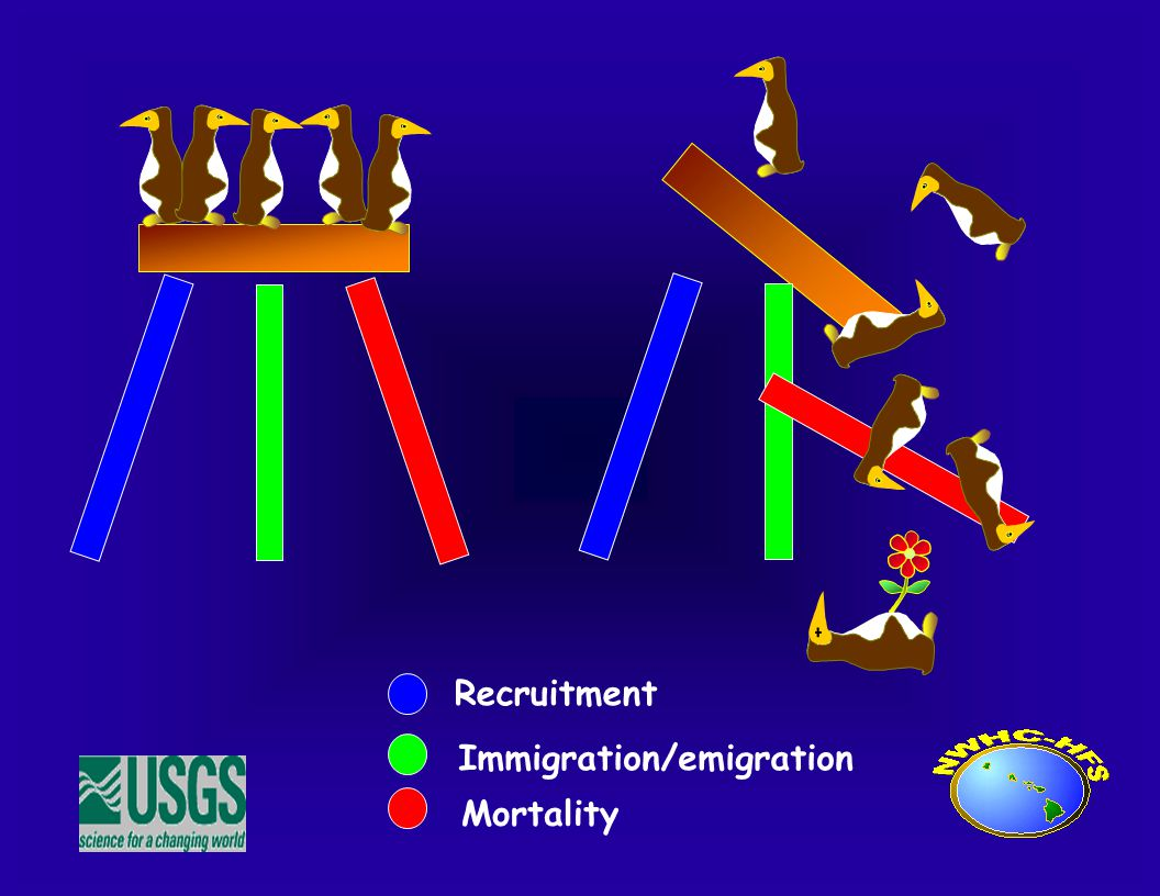 Recruitment Immigration/emigration Mortality