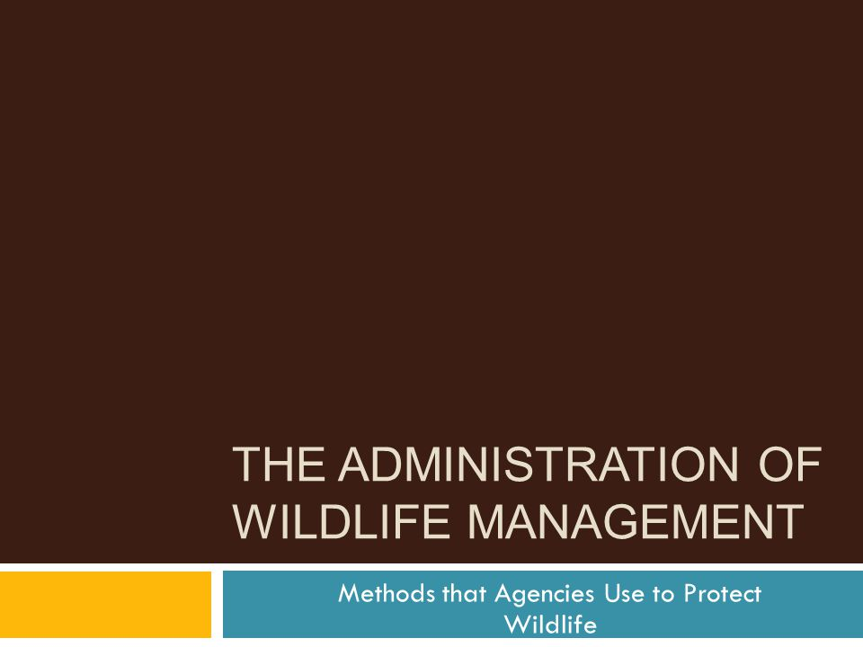 THE ADMINISTRATION OF WILDLIFE MANAGEMENT Methods that Agencies Use to Protect Wildlife