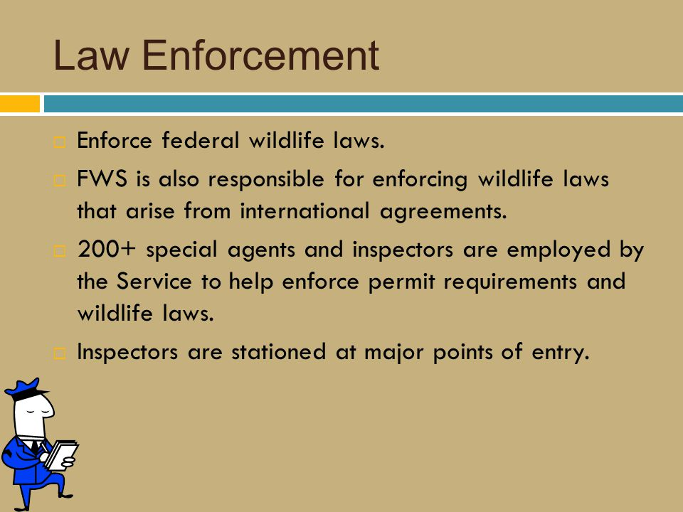 Law Enforcement  Enforce federal wildlife laws.