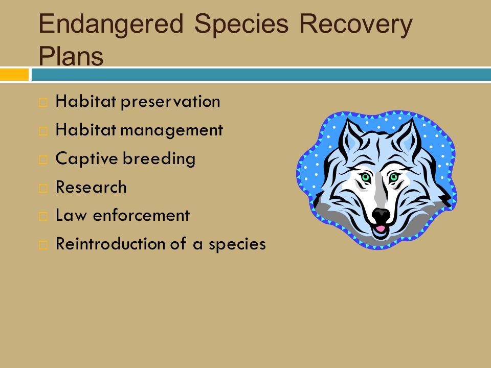 Endangered Species Recovery Plans  Habitat preservation  Habitat management  Captive breeding  Research  Law enforcement  Reintroduction of a species
