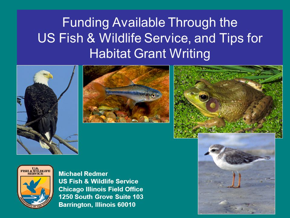 Funding Available Through the US Fish & Wildlife Service, and Tips for Habitat Grant Writing Michael Redmer US Fish & Wildlife Service Chicago Illinois Field Office 1250 South Grove Suite 103 Barrington, Illinois 60010
