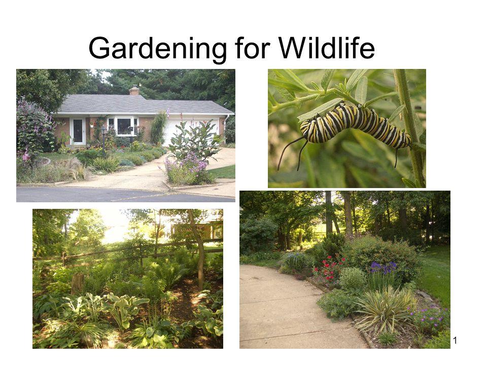 1 Gardening for Wildlife