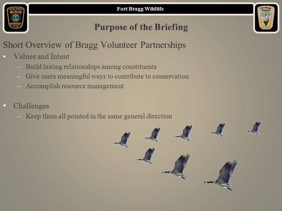 Fort Bragg Wildlife Purpose of the Briefing Short Overview of Bragg Volunteer Partnerships Values and Intent –Build lasting relationships among constituents –Give users meaningful ways to contribute to conservation –Accomplish resource management Challenges –Keep them all pointed in the same general direction