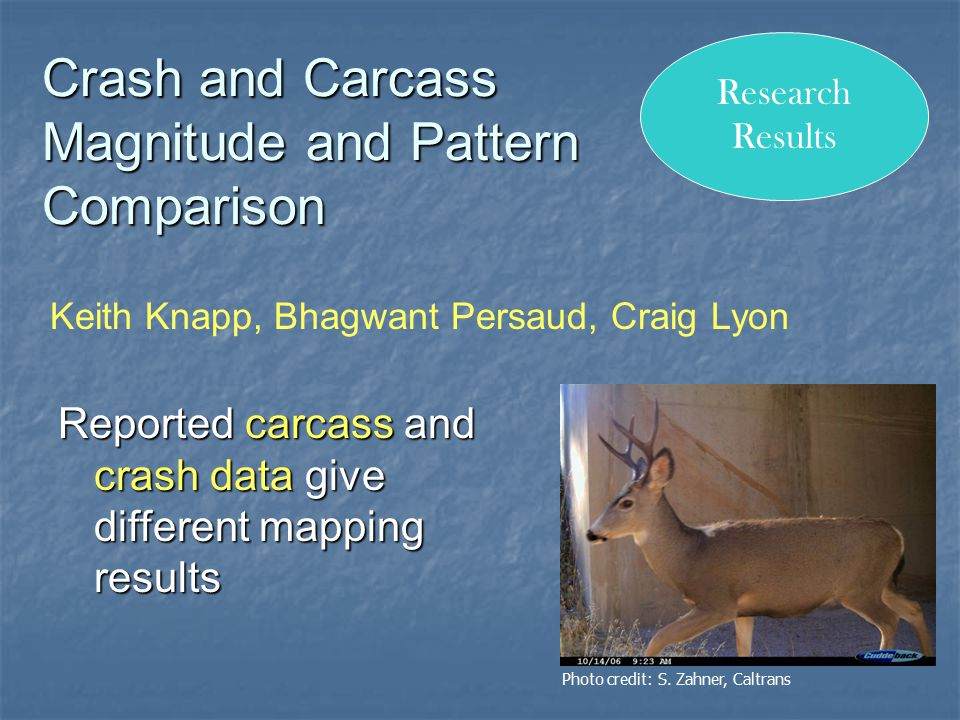 Crash and Carcass Magnitude and Pattern Comparison Reported carcass and crash data give different mapping results Keith Knapp, Bhagwant Persaud, Craig Lyon Research Results Photo credit: S.