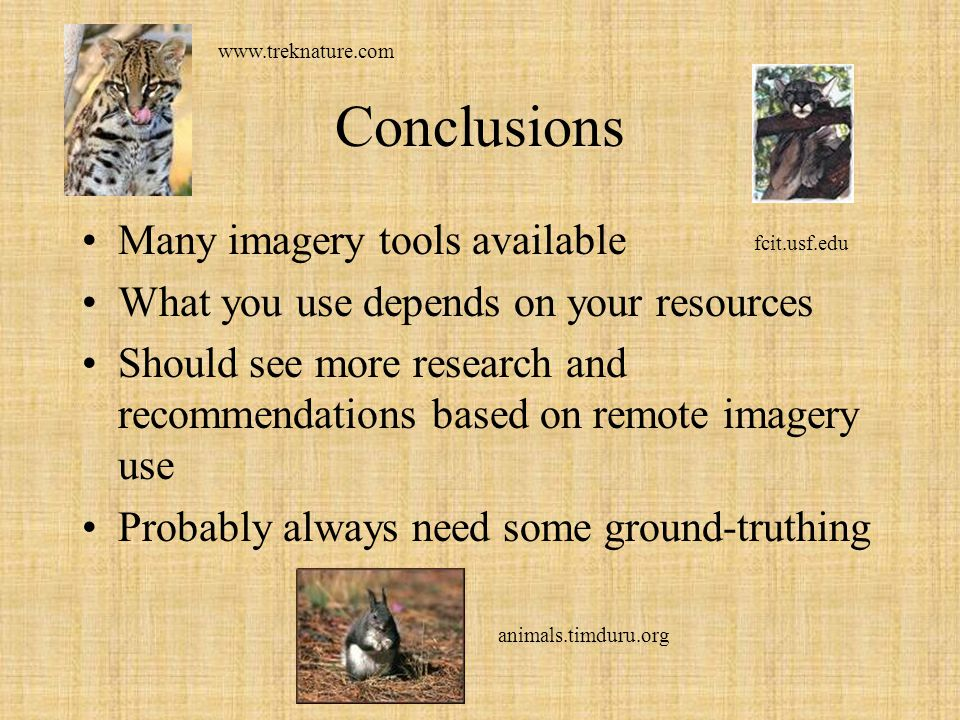 Conclusions Many imagery tools available What you use depends on your resources Should see more research and recommendations based on remote imagery u