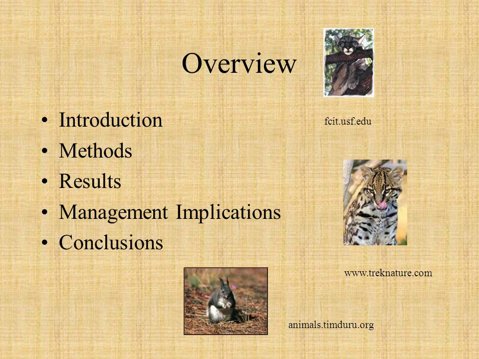 Overview Introduction Methods Results Management Implications Conclusions fcit.usf.edu www.treknature.com animals.timduru.org