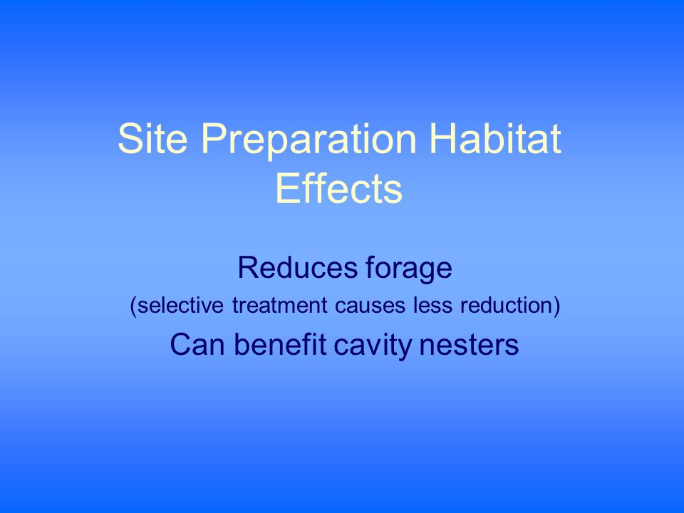 Site Preparation Habitat Effects Reduces forage (selective treatment causes less reduction) Can benefit cavity nesters