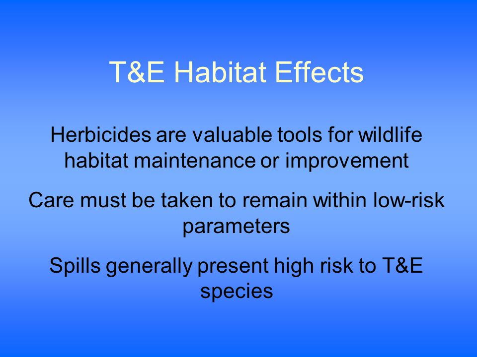 T&E Habitat Effects Herbicides are valuable tools for wildlife habitat maintenance or improvement Care must be taken to remain within low-risk parameters Spills generally present high risk to T&E species
