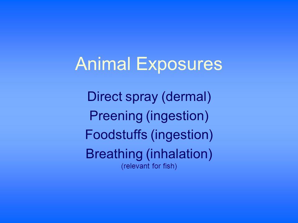 Animal Exposures Direct spray (dermal) Preening (ingestion) Foodstuffs (ingestion) Breathing (inhalation) (relevant for fish)