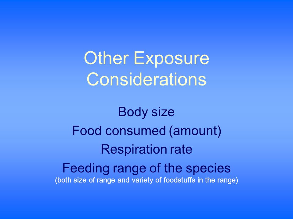 Other Exposure Considerations Body size Food consumed (amount) Respiration rate Feeding range of the species (both size of range and variety of foodstuffs in the range)