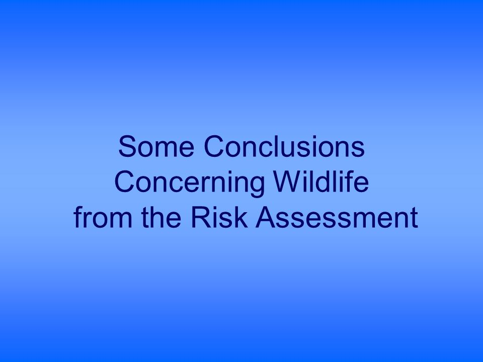 Some Conclusions Concerning Wildlife from the Risk Assessment