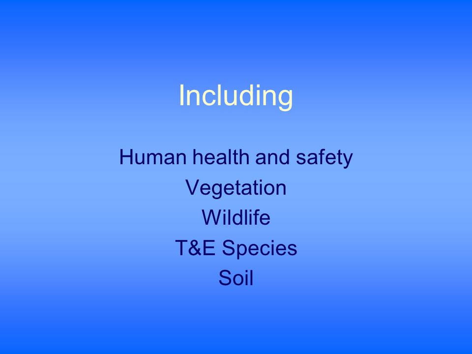 Including Human health and safety Vegetation Wildlife T&E Species Soil