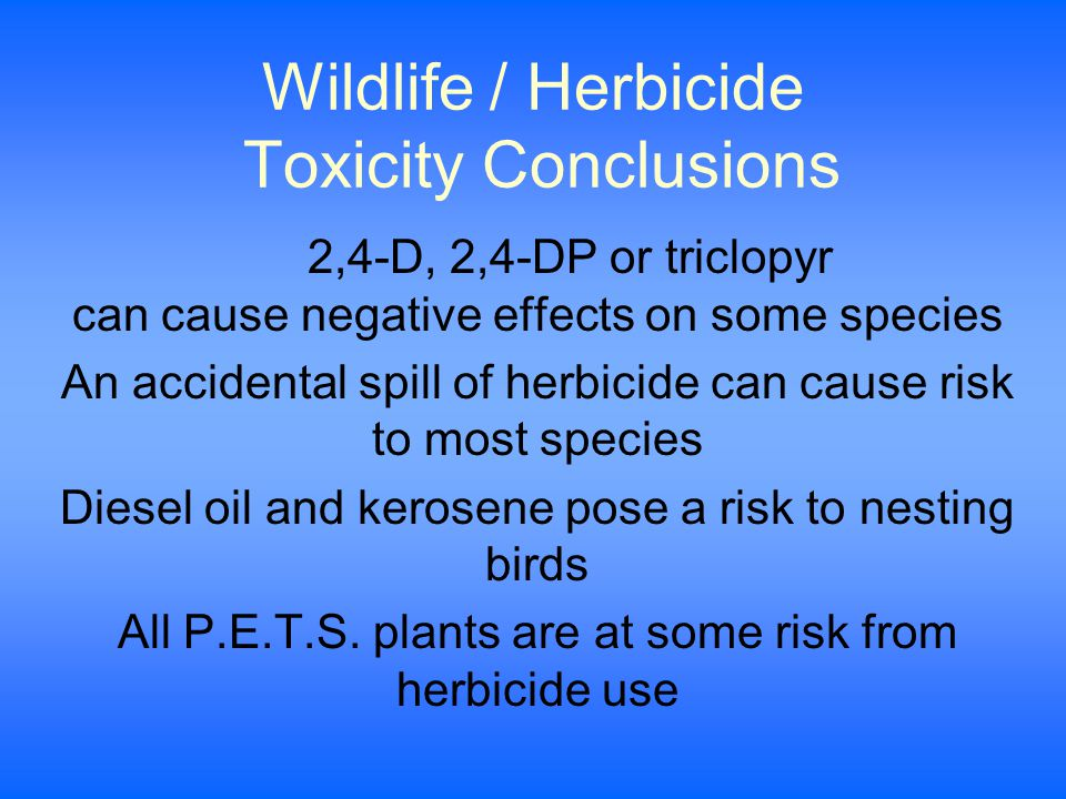 Wildlife / Herbicide Toxicity Conclusions 2,4-D, 2,4-DP or triclopyr can cause negative effects on some species An accidental spill of herbicide can cause risk to most species Diesel oil and kerosene pose a risk to nesting birds All P.E.T.S.
