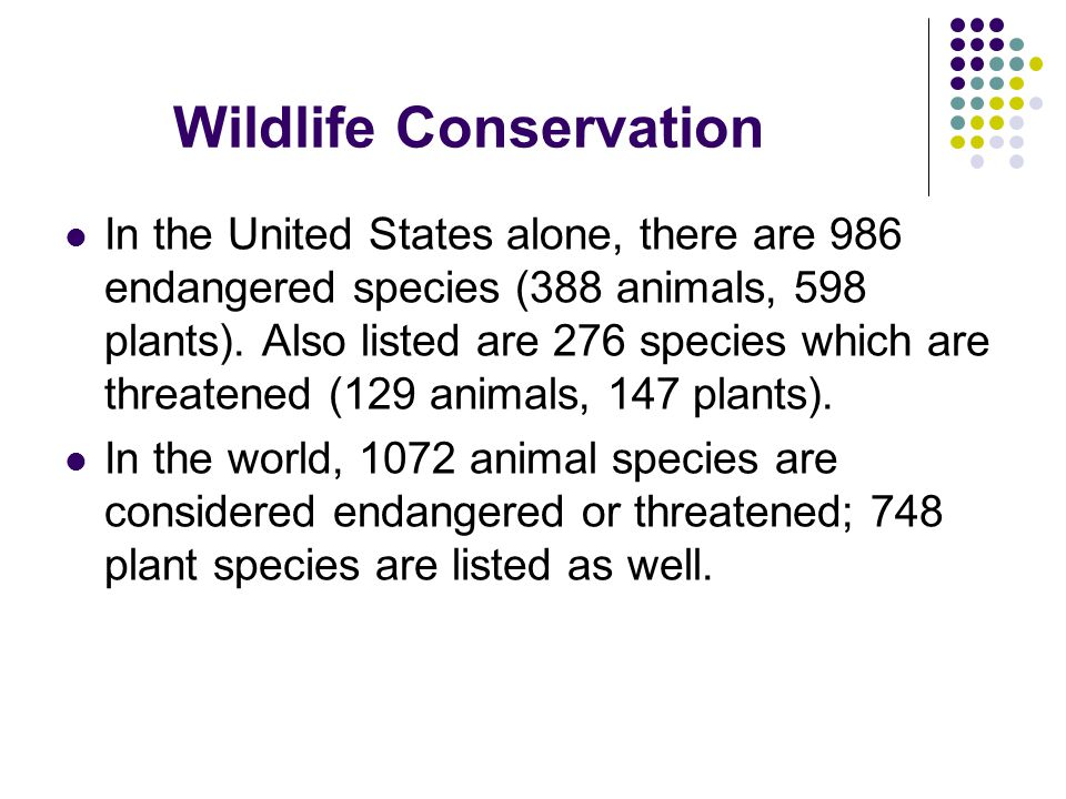 In the United States alone, there are 986 endangered species (388 animals, 598 plants). Also listed are 276 species which are threatened (129 animals,