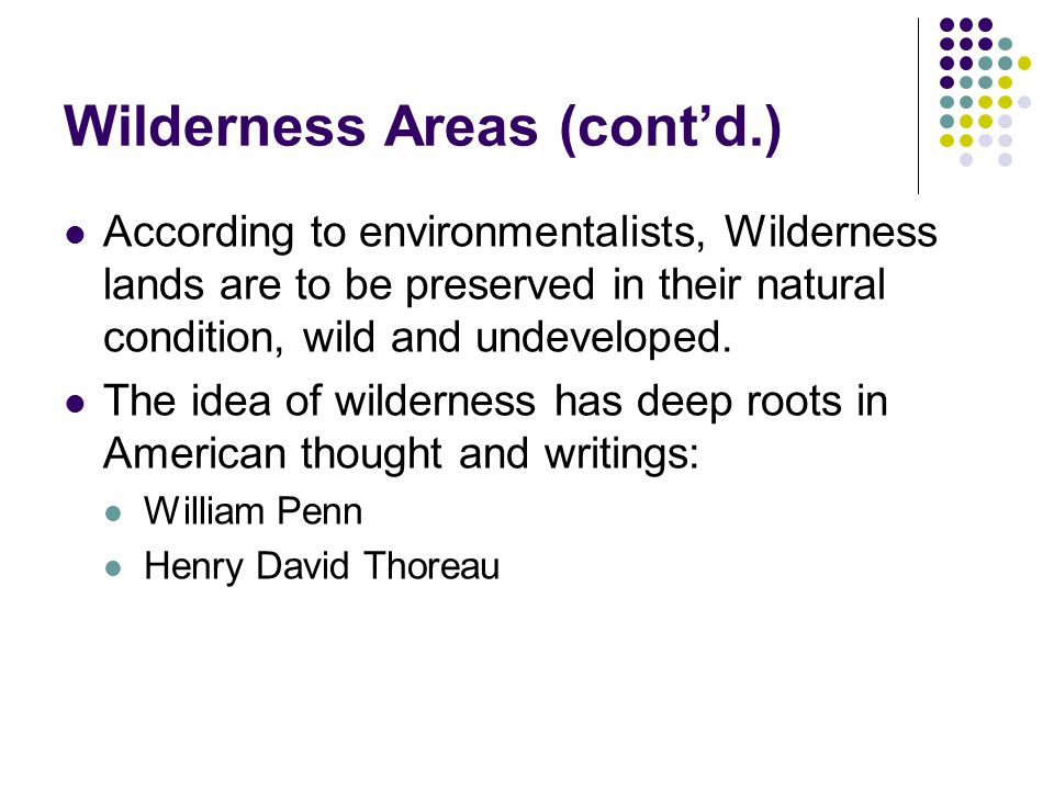 Wilderness Areas (cont'd.) According to environmentalists, Wilderness lands are to be preserved in their natural condition, wild and undeveloped. The