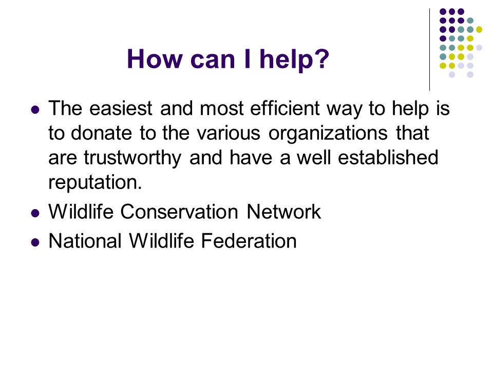 How can I help? The easiest and most efficient way to help is to donate to the various organizations that are trustworthy and have a well established