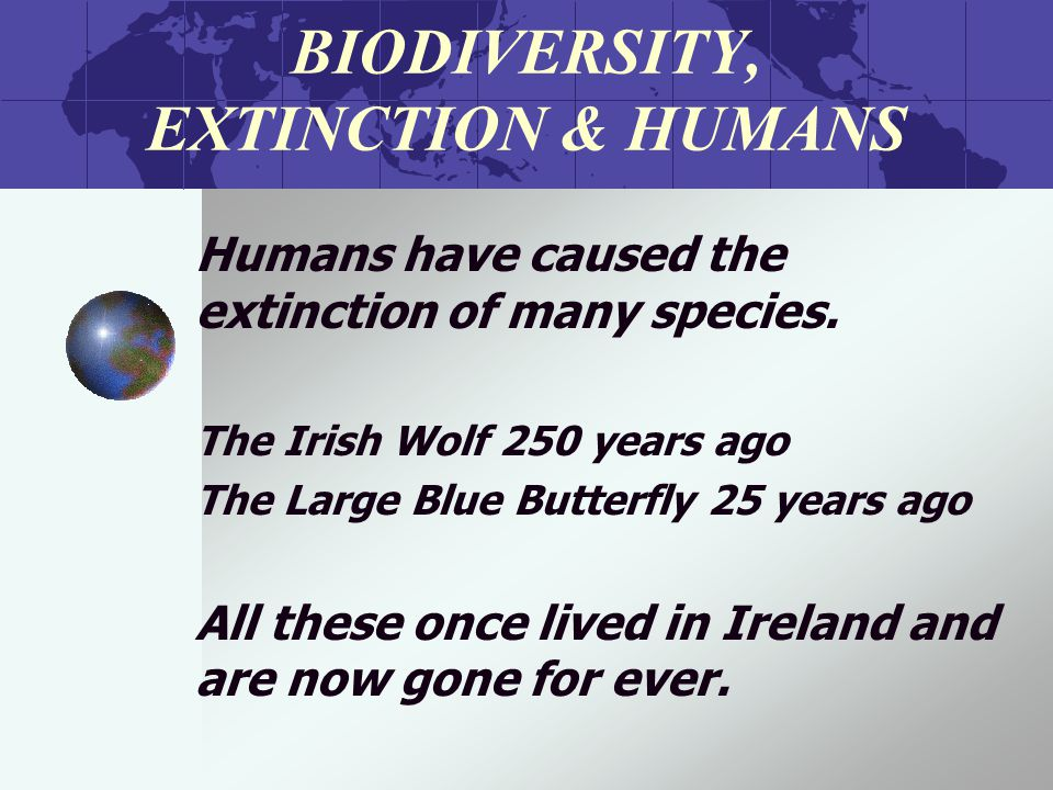 BIODIVERSITY, EXTINCTION & HUMANS Humans have caused the extinction of many species.