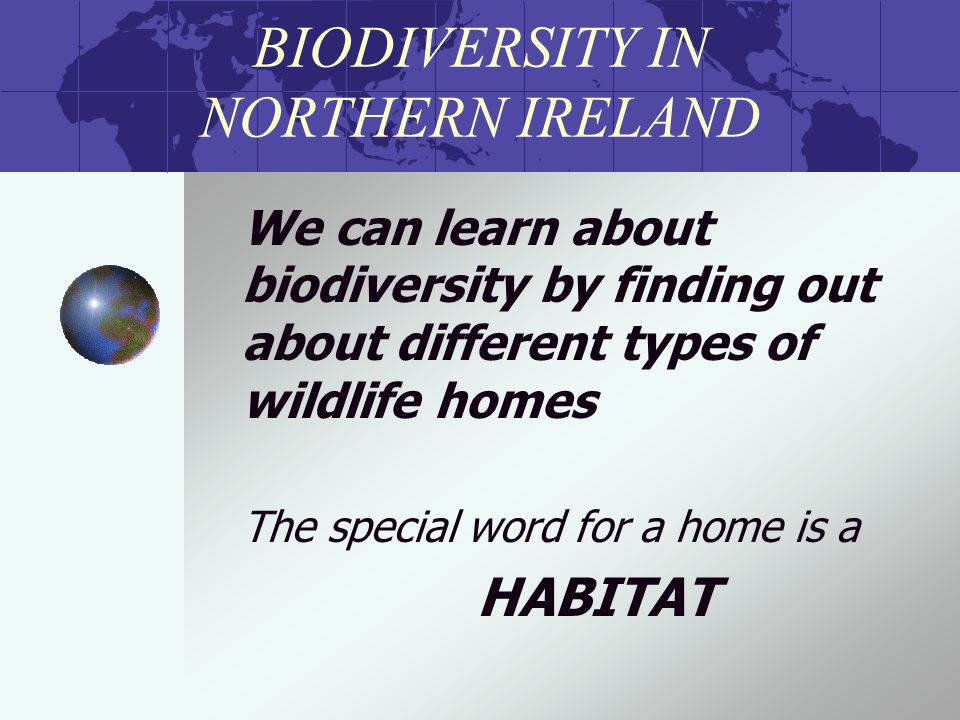 BIODIVERSITY IN NORTHERN IRELAND We can learn about biodiversity by finding out about different types of wildlife homes The special word for a home is a HABITAT