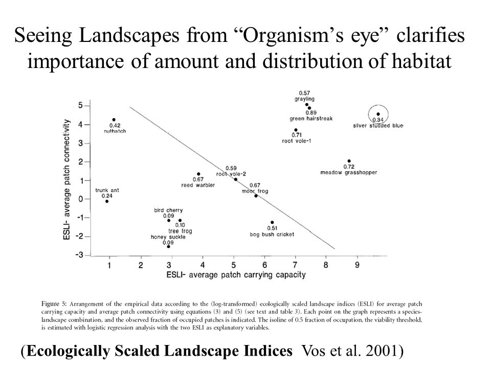 Seeing Landscapes from Organism's eye clarifies importance of amount and distribution of habitat (Ecologically Scaled Landscape Indices Vos et al.