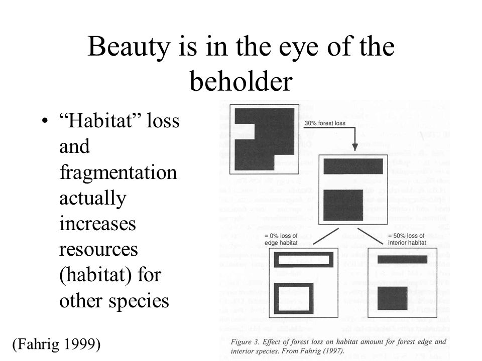 Beauty is in the eye of the beholder Habitat loss and fragmentation actually increases resources (habitat) for other species (Fahrig 1999)