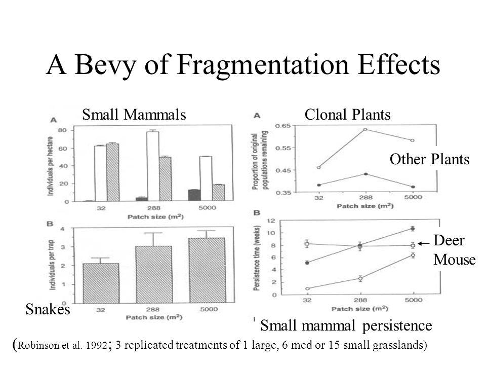 A Bevy of Fragmentation Effects ( Robinson et al.