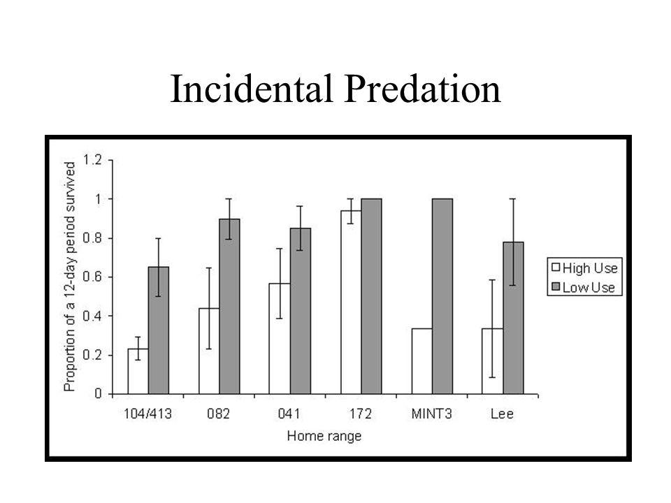 Incidental Predation