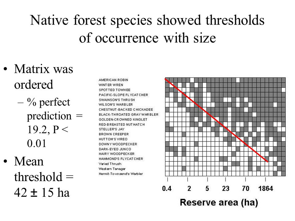 Native forest species showed thresholds of occurrence with size Matrix was ordered –% perfect prediction = 19.2, P < 0.01 Mean threshold = 42 ± 15 ha