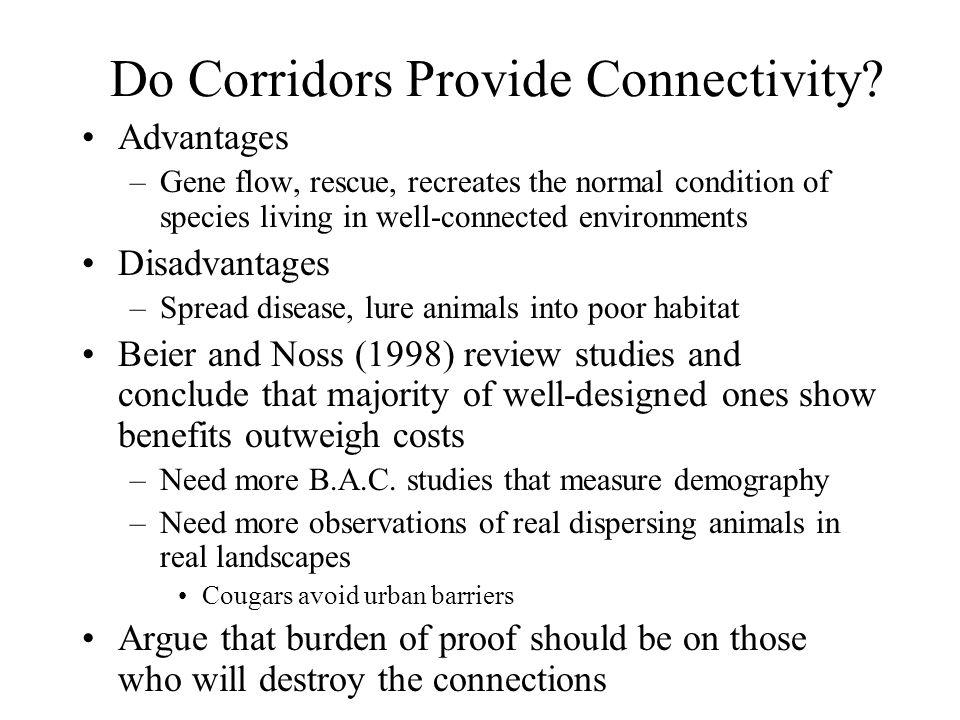 Do Corridors Provide Connectivity.